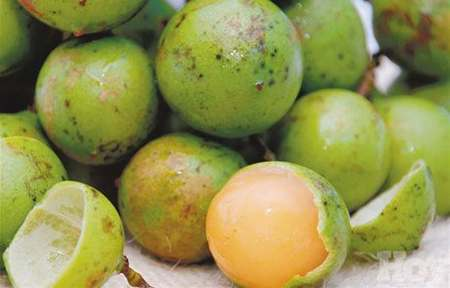 limoncillo